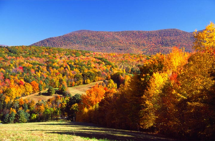 Berkshires Fall Foliage